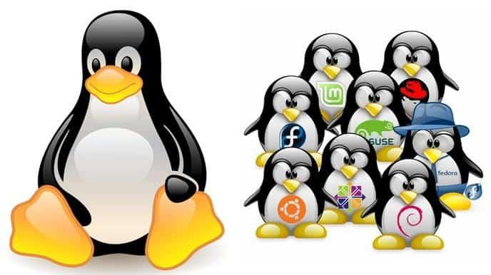 Linux finns i ett otal olika varianter, det är bara att välja.